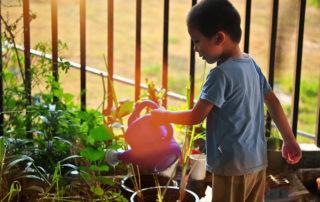 Garten und Kinder