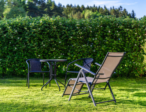 Tipps: So übersteht Ihr Garten die Urlaubszeit