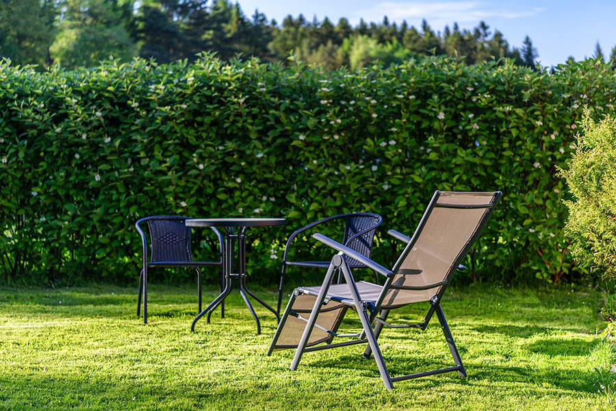 Urlaubszeit im Garten